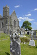 photography famous irish landmark, quin abbey, county clare, ire