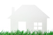 neutrales Kartonhaus in saftig grüner Naturwiese