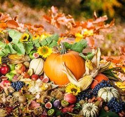 Herbst: Stillleben mit Kürbissen, Obst, Laub