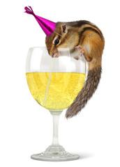 Funny chipmunk dress celebrat hat