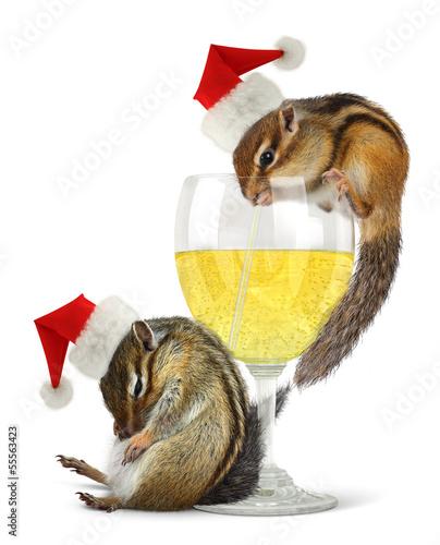 Funny drunk santas, chipmunks dress santa hat