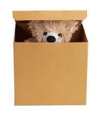 Teddy bear in a cardboard box