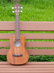 ukulele on garden bench