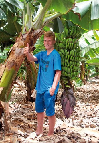 Ja zu Bananen