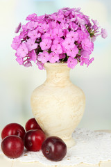 Beautiful bouquet of phlox in vase on table on light background