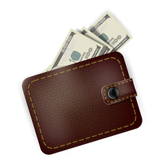 Leather wallet with dollars inside
