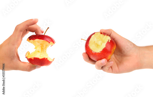 Hands holds core and nibbled apples.