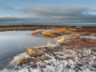 moorland peat bog in winter