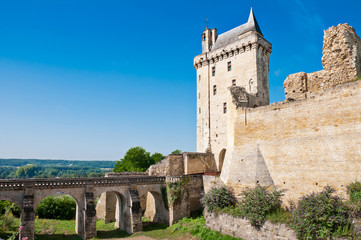 Chinon chateau, France