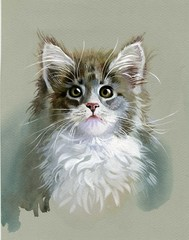 Watercolor Animal Collection: Gray Cat
