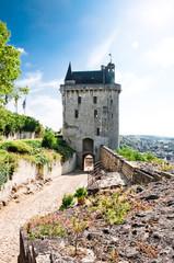 Chinon chateau, France