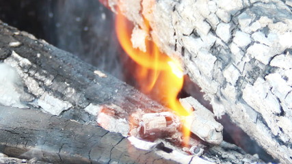 burning logs