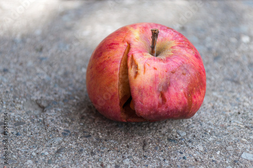 Bad Apple on the Floor