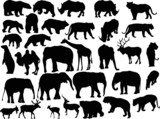 thirty two animal silhouettes isolated on white