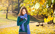 Beautiful girl with leaves on an sunny autumn-day