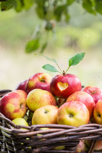 canvas print picture love apples