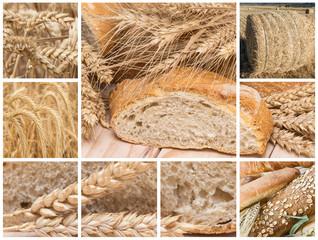 Pan y cereales para una dieta sana.
