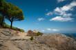 panorama isola del giglio