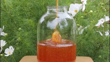 Bottling of honey