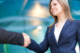 Businesswoman shaking hand
