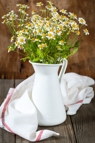 Bouquet of daisies. Pyrethrum
