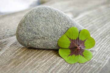 Kleeblatt mit Stein