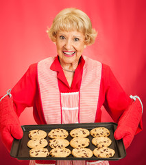Grandmothers Home-baked Cookies