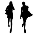 Silhouettes of fashion women with bags