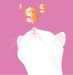 White cat and a dollar sign
