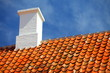old tiles red roof with himney sky background