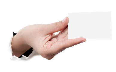 Business card in woman hand on white
