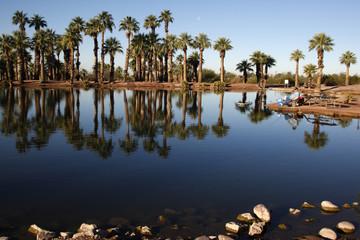 Papago Ponds