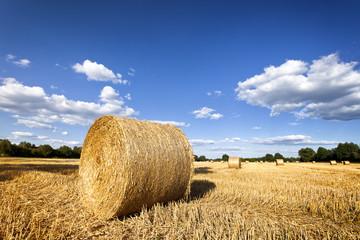 Heuballen auf Stoppelfeld zur Erntezeit in Niedersachsen