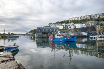 Mevagissey a Cornish Fishing Village