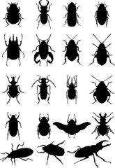 bugs silhouette