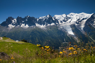 Chamonix Panorama