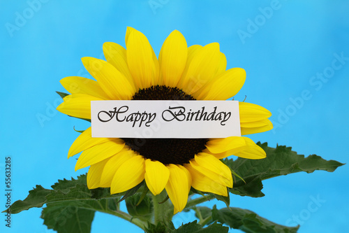 Happy Birthday card with sunflower