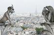 Stone demons gargoyle und chimera. Notre Dame de Paris - 55637097