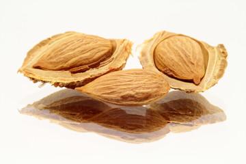 Three apricot seeds