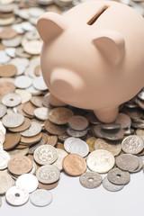 複数の硬貨と豚の貯金箱