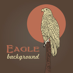 eagle drawing background in vintage colors
