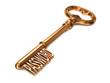 Password - Golden Key.