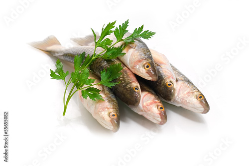 Fish food on a white background