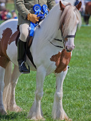 Winners of First Prize in an Equestrian Event
