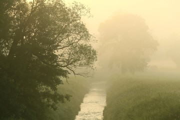 Idyllic scenery in the morning on a foggy day