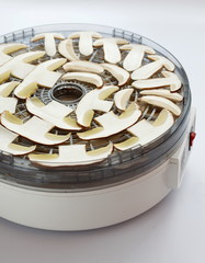 Drying machine with sliced ceps prepared for drying