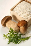 Cep risotto/ wild mushrooms risotto