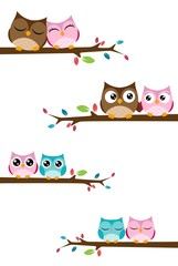 couples of owls sitting on branches