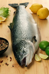 Salted raw salmon/ trout