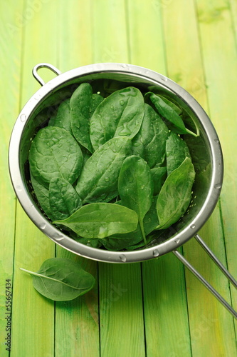 Fresh spinach leaves in a sieve
